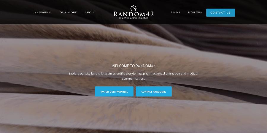 Random 42 ~ WordPress development expert